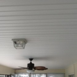 vinyl ceiling 1
