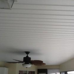 vinyl ceiling 3
