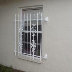 Window Guards -1