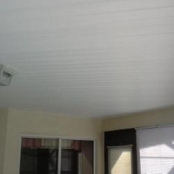 vinyl ceiling 2